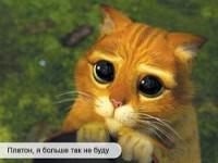 Удаление сайта из Яндекс каталога